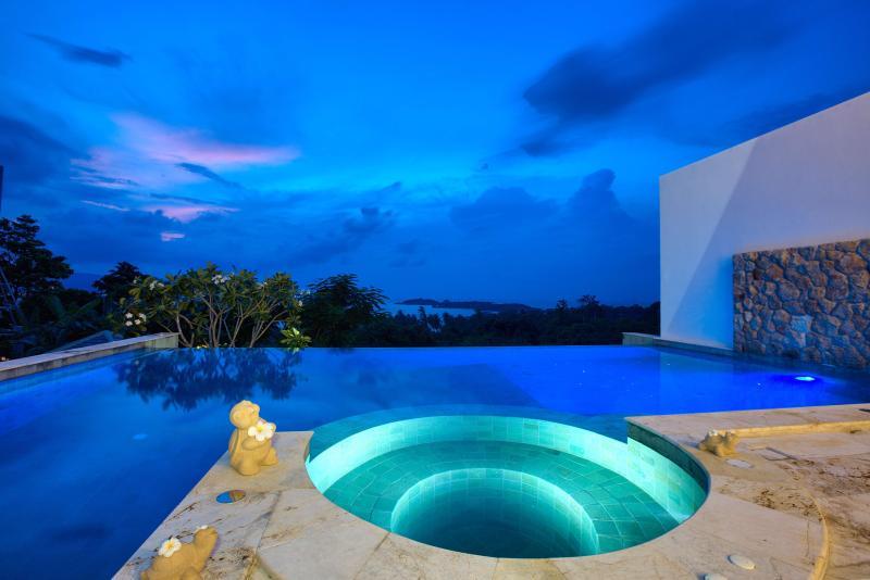 Villa HaiYi with Infinity Pool - Image 1 - Koh Samui - rentals