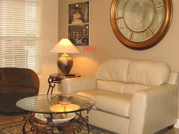 PERFECT JACUZZI  CONDO 1BD- NO STAIRS 417-331-0544 - Image 1 - Branson - rentals