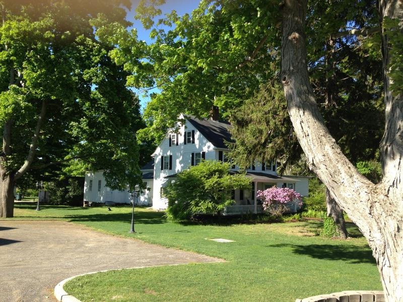 Sun and shade in Summer - **Charming**New England Historical Ppty Ideal for - Old Saybrook - rentals