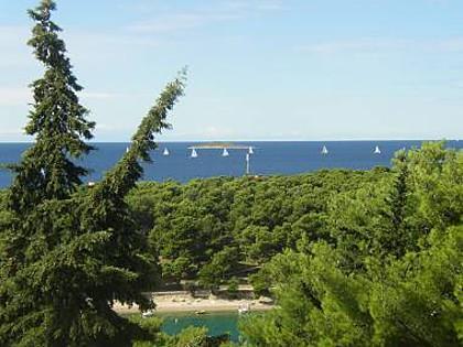 More (2+1): terrace view - 5089 More (2+1) - Primosten - Primosten - rentals