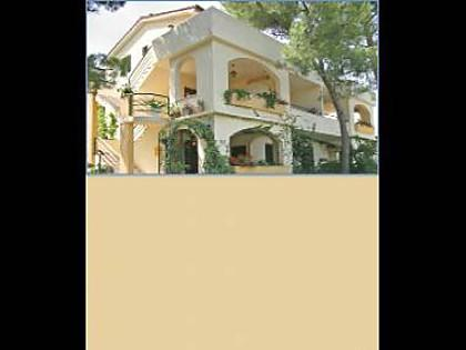 house - 5166 A3(2) - Slatine - Slatine - rentals