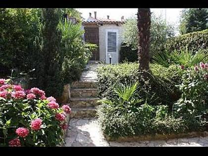 vegetation (house and surroundings) - 5307  A2(2) - Porec - Porec - rentals