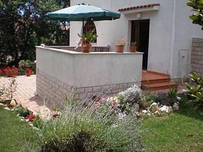 B4(4): terrace - 5313  B4(4) - Porec - Porec - rentals