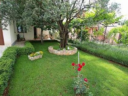 garden (house and surroundings) - 7885 A2(4+2) - Fazana - Fazana - rentals