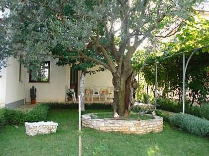A1(4+1): garden terrace - 7885 A1(4+1) - Fazana - Fazana - rentals