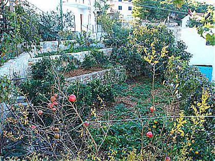 garden (house and surroundings) - 02106PRIM  A2(3) - Primosten - Primosten - rentals