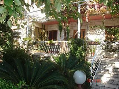 vegetation (house and surroundings) - 00316MLIN  SA2(3) - Mlini - Mlini - rentals