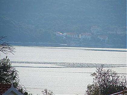 A3(4+1): terrace view - 00617VIGA A3(4+1) - Viganj - Viganj - rentals