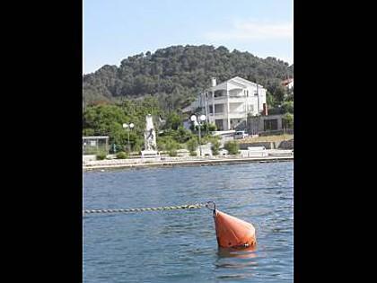 house - 2576 A1(2+2) - Lukoran - Lukoran - rentals