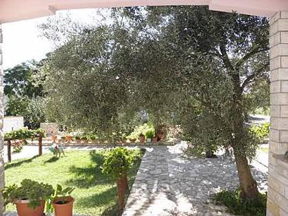 A3(3+1): garden terrace - 2709 A3(3+1) - Vir - Vir - rentals