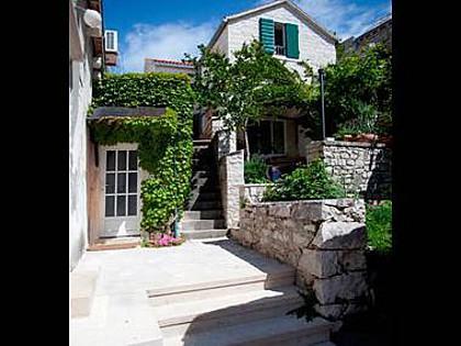 house - 3499  H(3+2) - Pucisca - Pucisca - rentals