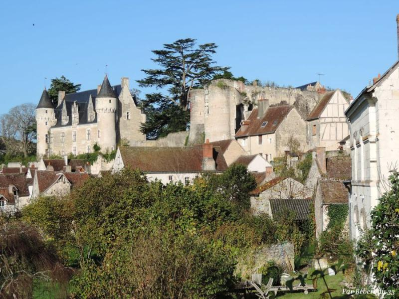 View from the house - Lovely views on castle - cottage with terrace - Montresor - rentals