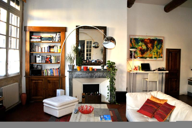 Charming and Spacious Historical Center APT in AIX - Image 1 - Aix-en-Provence - rentals