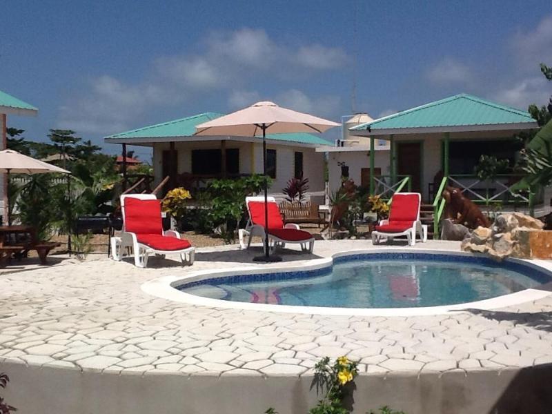 Salt water swimming pool and deck - Latitude Adjustment - Purple Crowned Fairy Cabana - Hopkins - rentals