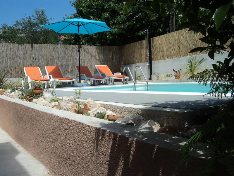 Private swimming pool - Apartment Albizia - Seget Vranjica - rentals