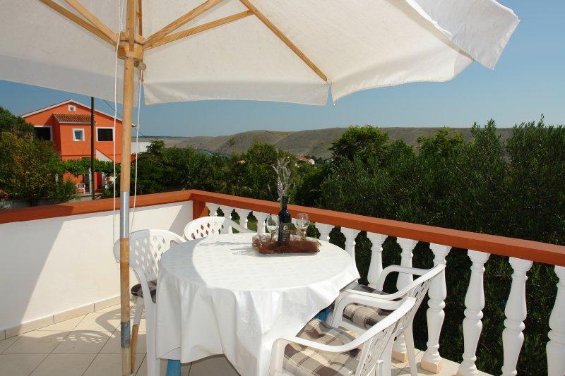 Apartments Rajko - 23461-A1 - Image 1 - Vlasici - rentals