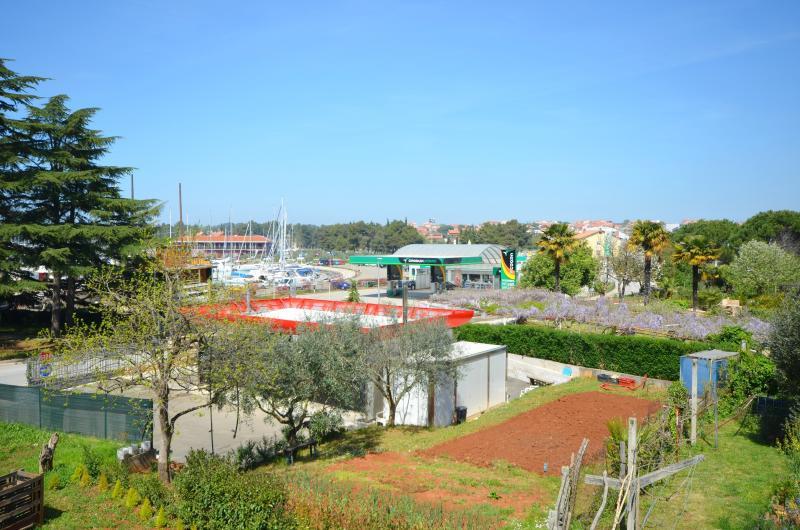 Apartment and Rooms Valter - 72671-S2 - Image 1 - Novigrad - rentals