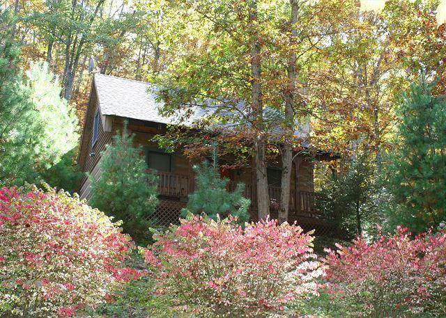 """""""LAURELWOOD""""  Everything You Need For The Perfect Getaway! - Image 1 - Fleetwood - rentals"""