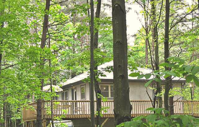 Our cottage is located on 22 acres of a private, heavily wooded ridge. - Honey Ridge Cabins~ a quality experience! - Logan - rentals