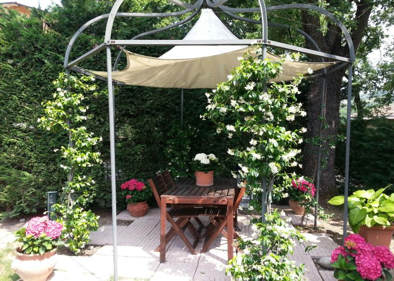 Charming apartment with garden and internet wifi - Image 1 - Specchio - rentals