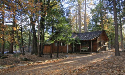 Naughty Pine Cabin 2 Bedroom 2 Bath Pets ok fenced yard in town - Naughty Pine - Idyllwild - rentals