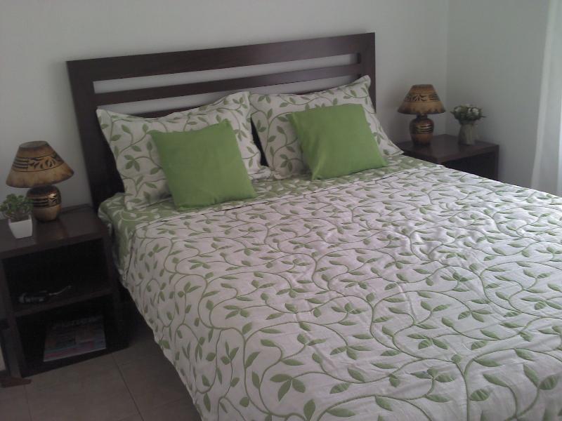 Beautiful apartment in quiet residential area - Image 1 - Punta del Este - rentals