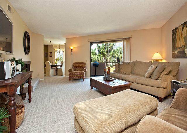Living room - 2 Bedroom, 2 Bathroom Vacation Rental in Solana Beach - (DMBC156SS) - Solana Beach - rentals