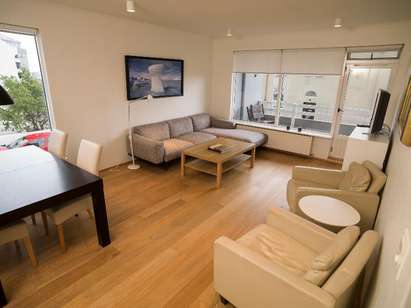 Living room - Beautiful Central Apartment - Reykjavik - rentals