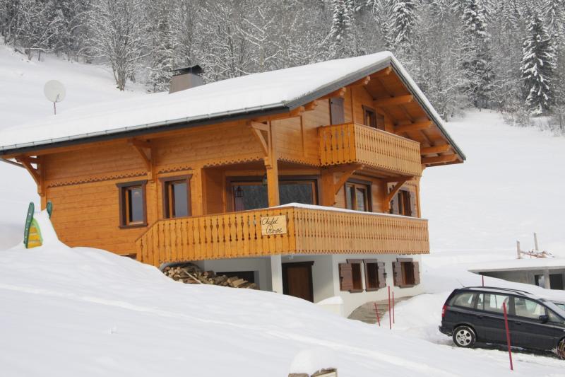 Chalet Rose, Chemin de la Ravine 60, Chatel (Portes du Soleil) - 16p luxury chalet opposite skislope in Chatel (Fr) - Chatel - rentals