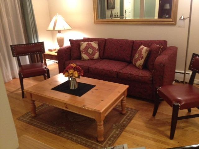 Living Room - Fully Furnished / All inclusive Downtown Condo - Boulder - rentals