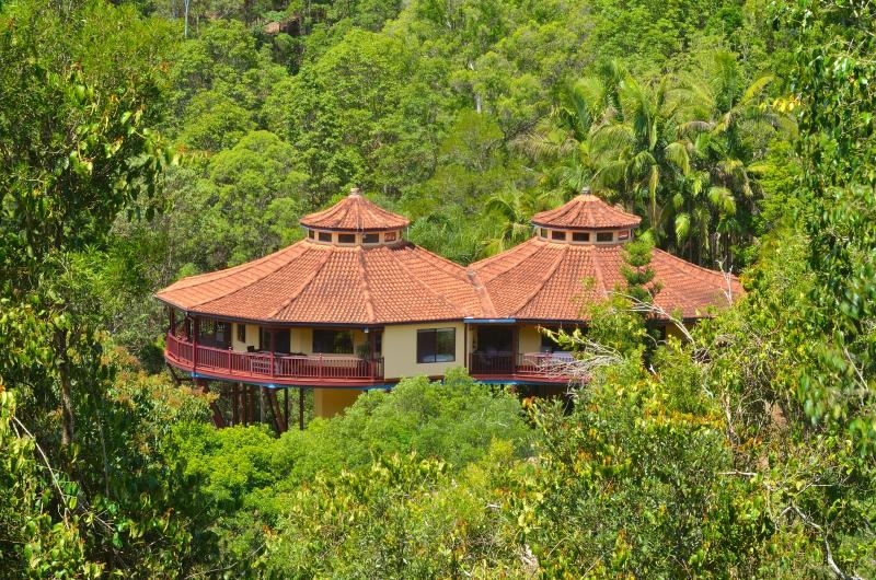 Leela - Lost in the trees - Lost in Leela - Seclusion & Luxury - Maleny house - Maleny - rentals
