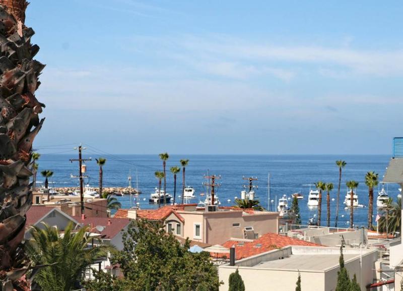 211 Whittley - Image 1 - Catalina Island - rentals