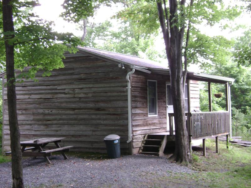 1-bedroom deluxe cabin in summer - Cabin rentals in the woods near Raystown Lake - Huntingdon - rentals