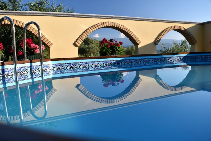 Plunge pool with amazing views in secluded courtyard. - 2 Bed Villa Apt Near Beach & Skiing With Pool - Bucchianico - rentals