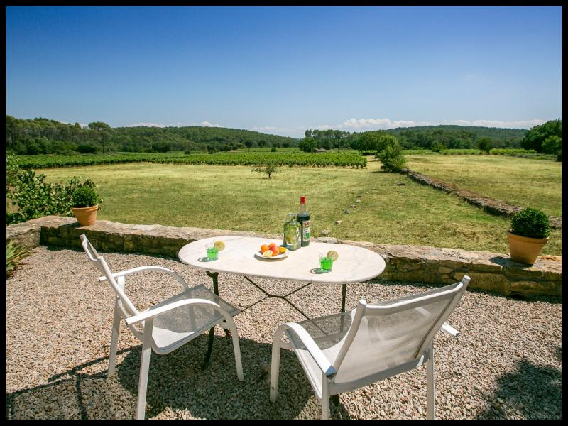 Dream Villa with Pool, Fireplace, and is Pet-Friendly, Cotignac France - Image 1 - Cotignac - rentals