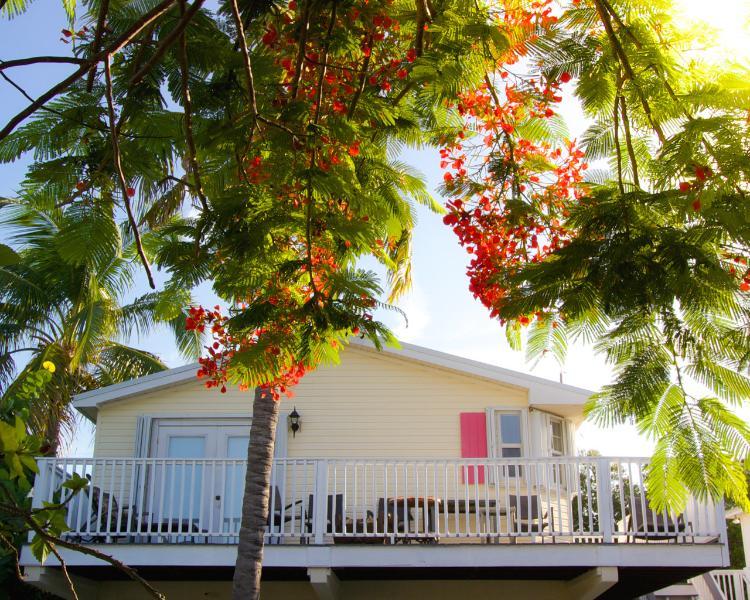 Periwinkle Elevated Ocean View Cottage - Image 1 - Marathon - rentals