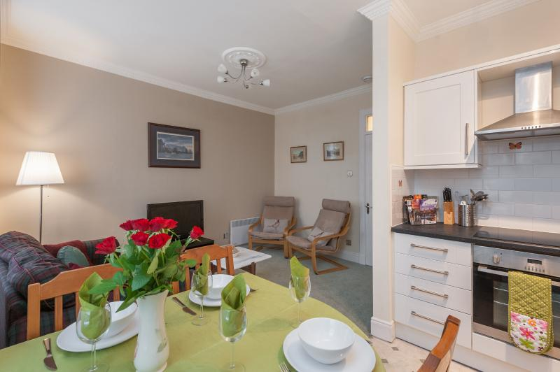 Blair St Scott apt lounge & kitchen - Blair St Scott, just off Royal Mile - Edinburgh - rentals