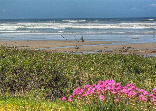 Topley House R528 Waldport Oregon ocean front vacation rental - Image 1 - Waldport - rentals