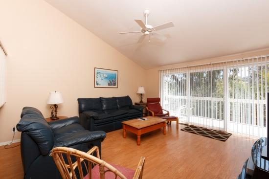 1735 Kennington Rd - Image 1 - Encinitas - rentals