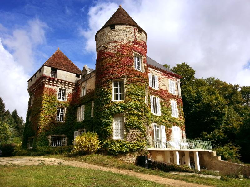 Chateau De Cheimeray - Image 1 - Douadic - rentals