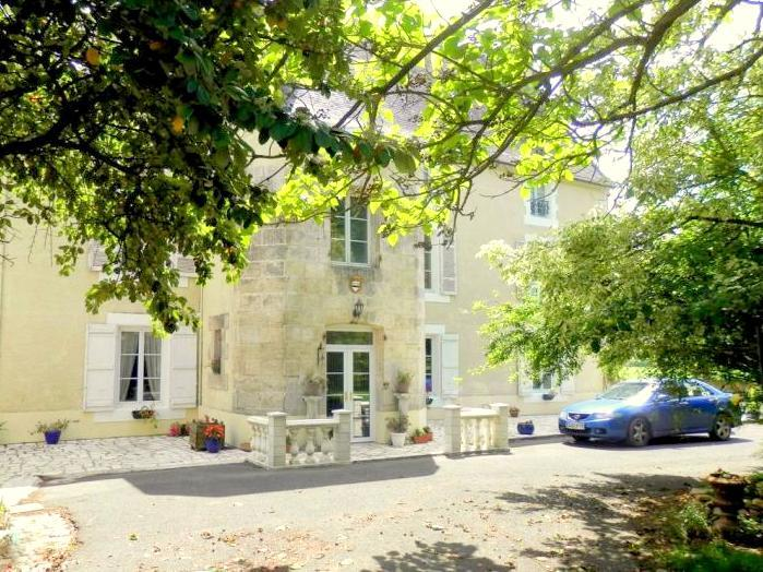 Chateau Ardille - Image 1 - Ardilleux - rentals