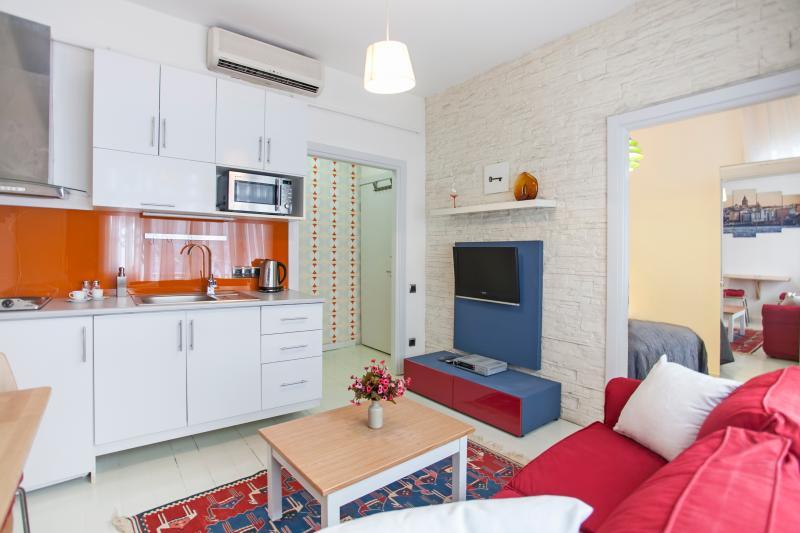 1+1 beyoglu apartment  (803) - Image 1 - Istanbul - rentals