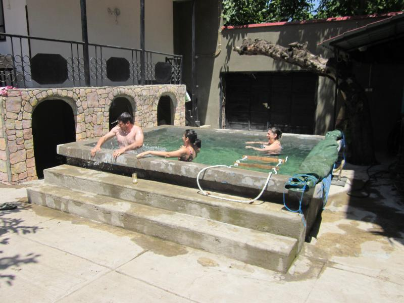 "Pool - Family Summer House ""Raspberry Field"" - Yerevan - rentals"