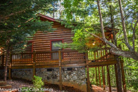 BEAR HUG CABIN- 2BR/1BA- CABIN SLEEPS 4, LOCATED WITHIN WALKING DISTANCE OF CHERRY LAKE AND THE BENTON MACKAY TRAIL! 14FT MAD RIVER CANOE, WIFI, WOOD BURNING FIREPLACE, CHARCOAL GRILL, PAVED ACCESS! ONLY $99 A NIGHT! - Image 1 - Blue Ridge - rentals