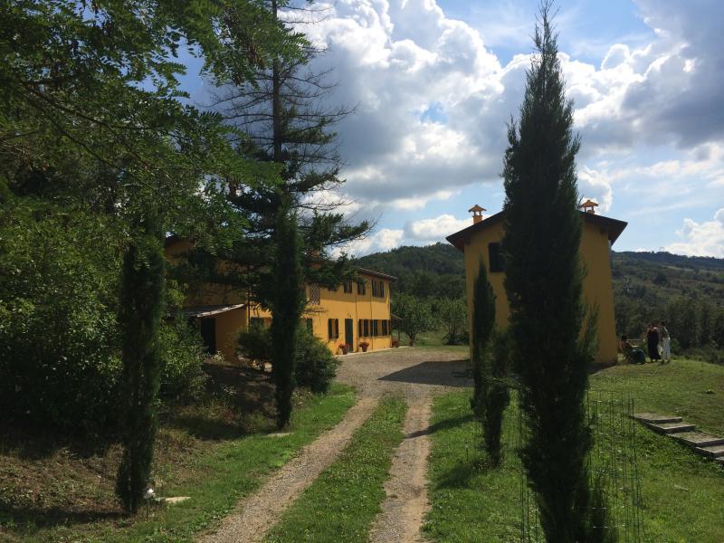 Hilltop Villa Hideaway with Pool - Image 1 - Bologna - rentals