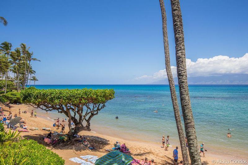 Napili Bay Resort, Condo 201 - Image 1 - Lahaina - rentals