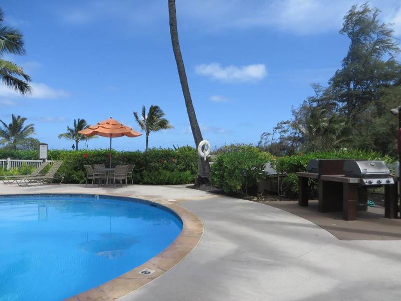 Kaha Lani Resort #129-OCEANVIEW, 2 BR, End Unit - Image 1 - Kapaa - rentals