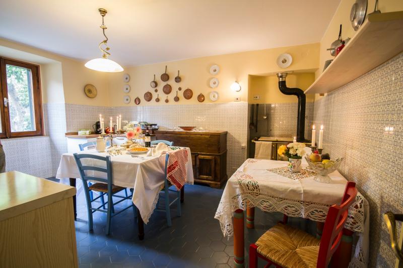 Charming Farmhouse with a Private Courtyard in Cortona - Casa Lina - Image 1 - Cortona - rentals