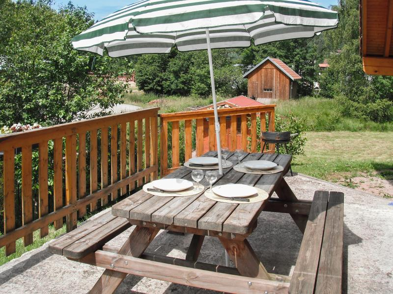 Unique chalet close to La Bresse with garden and patio - Image 1 - La Bresse - rentals