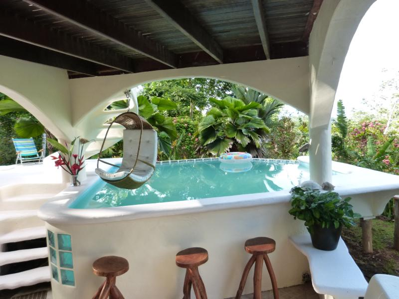 Osa Peninsula Vacation Home Rental- the  only Indoor/Outdoor Pool and total privacy on a rivate wild - Greek Style/OceanViews/PRIVATE/Beach /POOL/10ppl - Puerto Jimenez - rentals